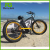 Hummer 48V 500W Fat Tyre Electric Bicycle with Ce En15194