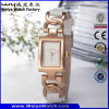 Fashion Hot Sale Steel Quartz Woman Wrist Watch (Wy-020A)