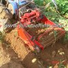 Hot Selling Mini Potato Harvester with Walking Tractor