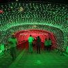 110V Holiday Outdoor Decoration LED Net Christmas Light Warm White Lights