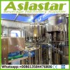 8000bph Fully Automatic Water Bottle Filling Packing Machine Plant