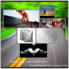 Nutrition Supplements Creatine Bodybuilding Energy Creatine CAS 57-00-1