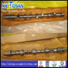 Camshaft for Peugeot 405/ 206/ 307/ 504/ 505/ Dw8/ Dw10