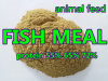 Feed Grade Fish Meal Powder Protein 65% 72%