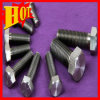 Supply Gr5 M3 Titanium Bolt/Screw