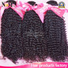 High Quality Kinky Curl Braiding Sew in Hair Weave Twists Hair