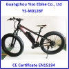 Mountain Electric Fat Cruiser Bike with Samsung Battery