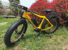 Very Hot Sale and Powerful Mountain E-Bike with Pedal Assisted