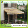 Useful Detachable Aluminum Windows Garden Cassette Retractable Awning