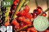 Increasing Testosterone Fatty Acids 25% Saw Palmetto Extract