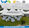 Latest Style Roof Top Canopy with Partial Clear PVC for Outdoor Catering