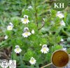 Natural Relieving Coughs Eyebright Extract 10: 1