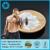 Bodybuilding Legal Steroids Powder Clostebol Acetate for Lean Muscle Fitess