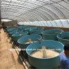 Large Fiberglass FRP Round Fish Farm Tank