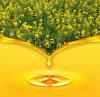 Pure Non-Gmo Organic Rapeseed Oil