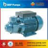 Qb Vortex Pump