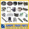 Over 500 Items Man Tgx Truck Parts
