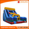 Inflatable Fun Game Double Lane Slide for Kids (T4-227)