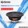 Stage Audio Speaker Woofer of 350W Sound Speaker