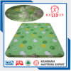 Thin Foam Mattress Rolling Foam Mattress