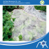 Nonwoven Fabric for Vegetable Cover