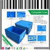 Convenient Transportation Plastic Collapsible Crate
