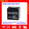 Maintenance Free Sealed Lead Acid Battery 12V 24ah