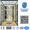 Home Hydraulic Villa Elevator with Italy Gmv System (RLS-248)