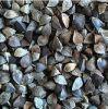 Coarse Buckwheat Exporting (Shanxi Origin)