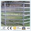 Livestock Panels/Yards Panels/Cattle Fence Factory