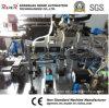 Non-Standard Customized CCD Testing Machine Automatic Packing Machine