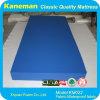 Use for Prison Waterproof Fire Mattress (KM022)