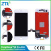 AAA Quality Mobile Phone LCD Screen for iPhone 7 LCD Touch Display
