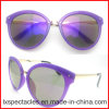 2015 New Fashion PC Design Sun Glasses with Metal Bridge