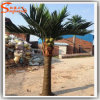 Professional Manufacturer Artificial Royal Mini Coconut Palm Tree