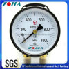 Yzs-102 Series Double Pointer Double Pipe Double Connector Pressure Gauge