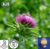 100% Natural Liver Protecting Ingredient Milk Thistle Extract Silymarin 80%, Silybin 30%