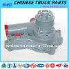Water Pump for Yuchai Diesel Engein Parts (A3100-1307010b)