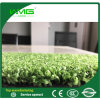 Green Synthetic Grass for Hockey
