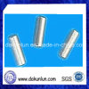 Customized Needle Roller, Shenzhen Factory