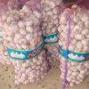 2015 New Crop Vegetables Fresh Red Garlics