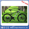 New Product 2014 Hot Race Bicycle Carbon Fiber Bike Chooper Bicycle
