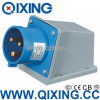 Wall Mounted Plug with International Standard (QX-344)