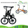 18inch Carbon Steel Folding E-Bike with 7 Speed (YZTDBS-5-18)