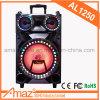 Temeisheng Newest Trolley Acid Battery Trolley Speaker