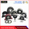 Auto Center Bearing, Car Center Bearing, Truck Center Bearing, Driveshaft Center Bearing