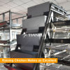 Automatic layer chicken cage feeding system