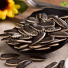 Chinese Sunflower Seeds with Biggest Size 363 to Middle East