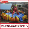 Durable Inflatable Adult Water Slide with Pool