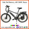 500W Powerful E-Bike Made in China 36V9ah E-Bicycle Electric Bicycle Electric Bike (PE-TDE11Z)